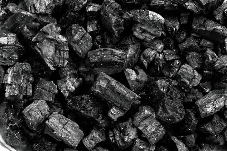 węgiel drzewny dogrilla